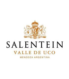 Salentein Barrel Selection The Blend 75cl